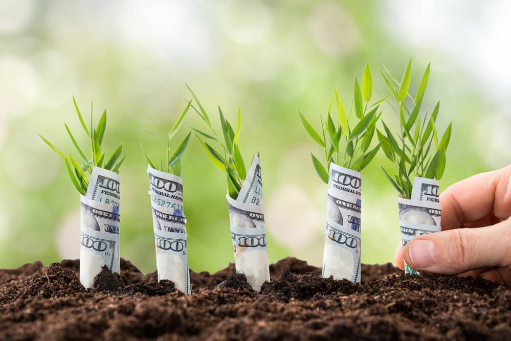 Geld investieren und Vermögen aufbauen